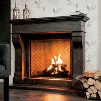 Ortal Frameless Gas Fireplace Traditional Clear View ...