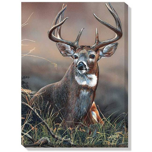Whitetail on Guard Wrapped Canvas Art