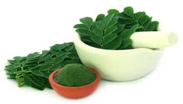 Image result for moringa extract