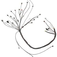 Ka24de Alternator Wiring Diagram 2000 Honda Civic 240z Sr20det Swap Harness | Specialties