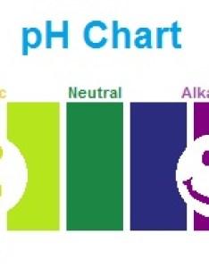 Ph chart sickness healthg also analyzing  comparing brands of bottled water rh alkalinewaterplus