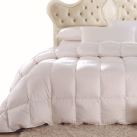White Down Comforter Twin