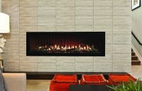 "Boulevard Linear 48"" Contemporary Direct Vent Gas Fireplace"