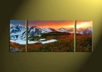 3 Piece Green Nature White Canvas Wall Art