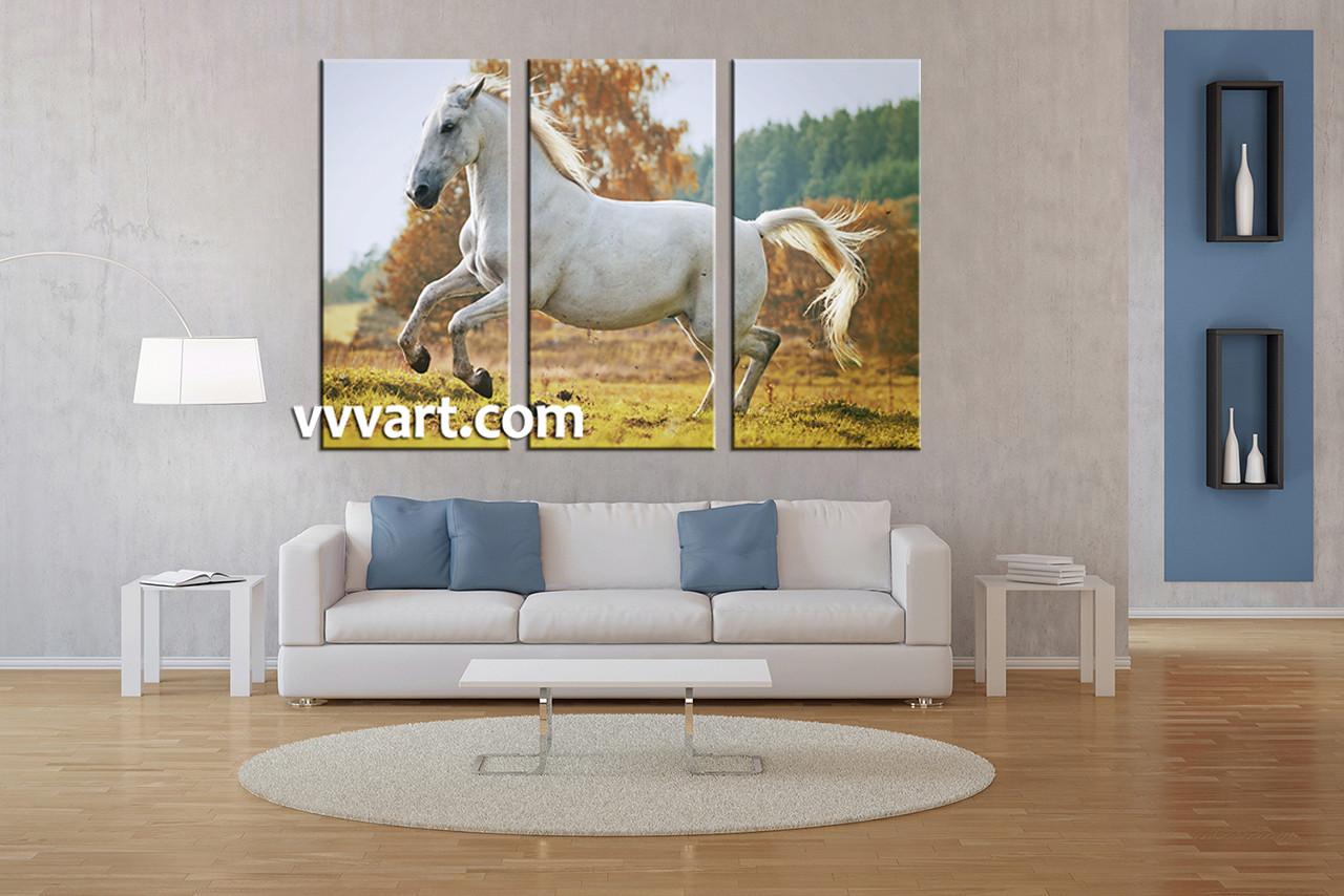 3 Piece Wildlife White Horse Large Canvas