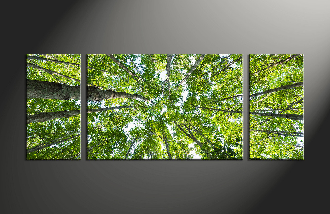 Triptych Scenery Green Nature Leafy Huge Canvas Art