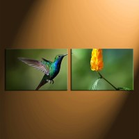 2 Piece Canvas Wall Art, Hummingbird Canvas Photography ...