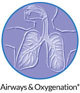 pw-ov-airways.jpg