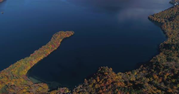 aerial footage of autumn