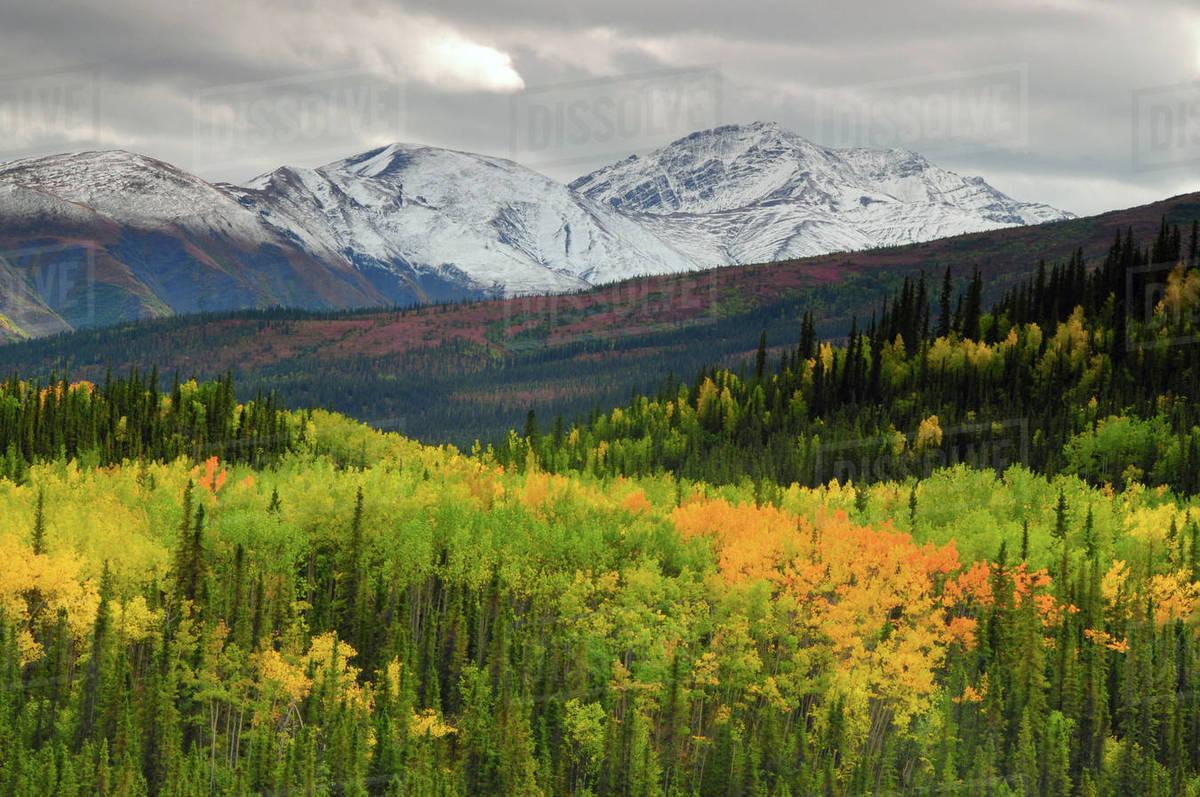 alaska range in autumn