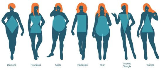 Image result for body shapes women