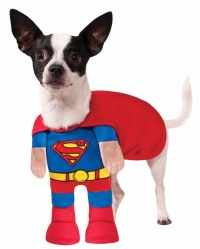 Rubies Superman Classic Superhero Pet Animal Dog Halloween