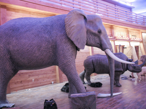 Movie Prop Elephant Trunk for Film Making and Displays