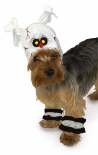 Dog's Scary Ghost Halloween Costume