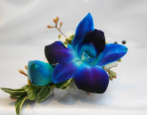Blue Orchid Boutonniere  Soderbergs Floral and Gift