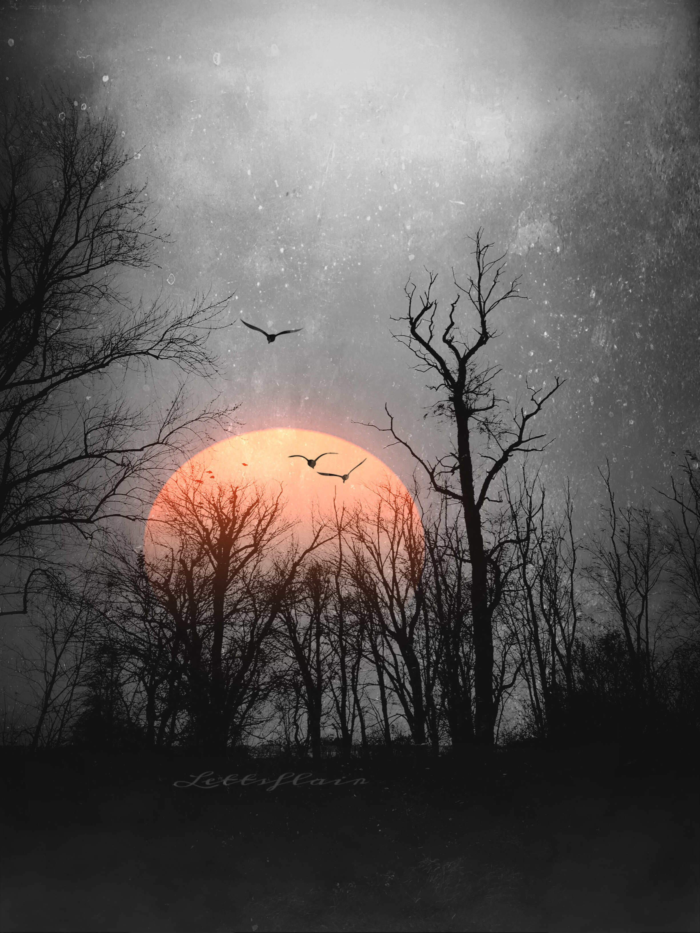 hight resolution of sunrise texture sun clipart grunge picoftheday beaut