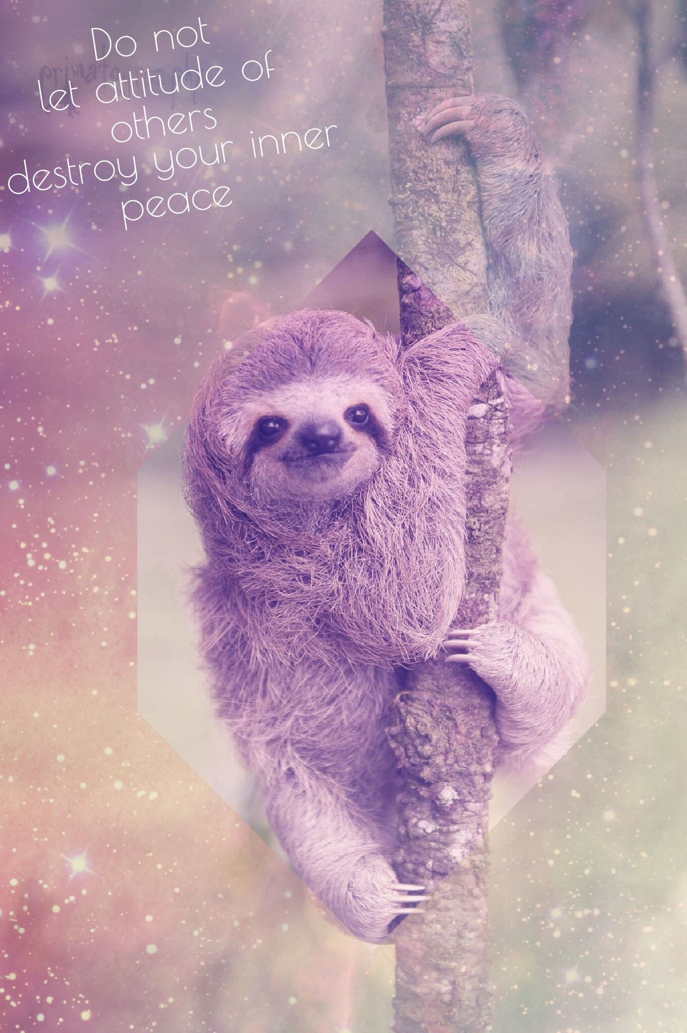 Cute Baby Wallpaper Apps Wallpaper Wallpapers Colorful Sloth Sloths Slothwallpap