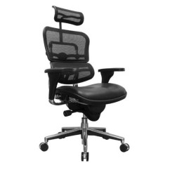 Back Support Cushion For Office Chair Singapore Wheel Olx Mesh Seat Cushion. Master Yes Ys72 Task Shop Chairs ...