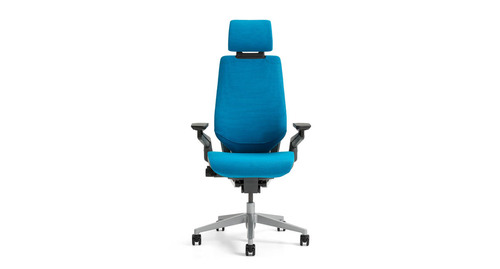 raynor ergohuman chair planq unusual steelcase leap worklounge in leather