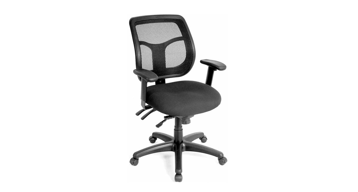 raynor ergohuman chair low back outdoor chairs shop apollo mft9450 multi-function task