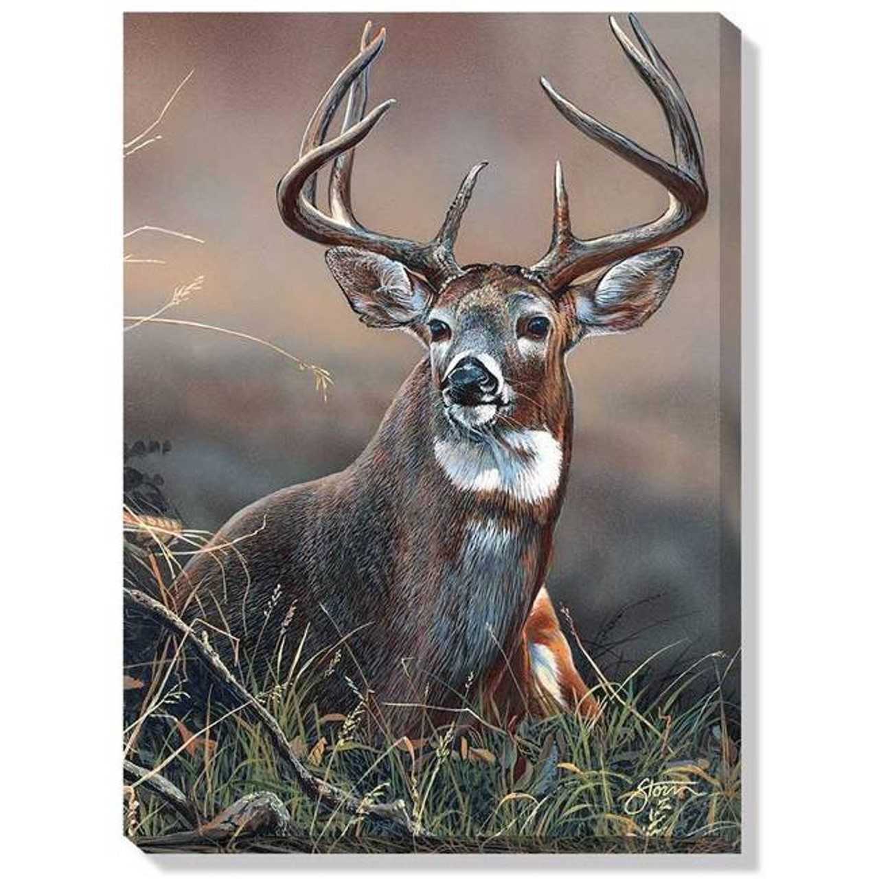 Whitetail Guard Wrapped Canvas Art American Expedition
