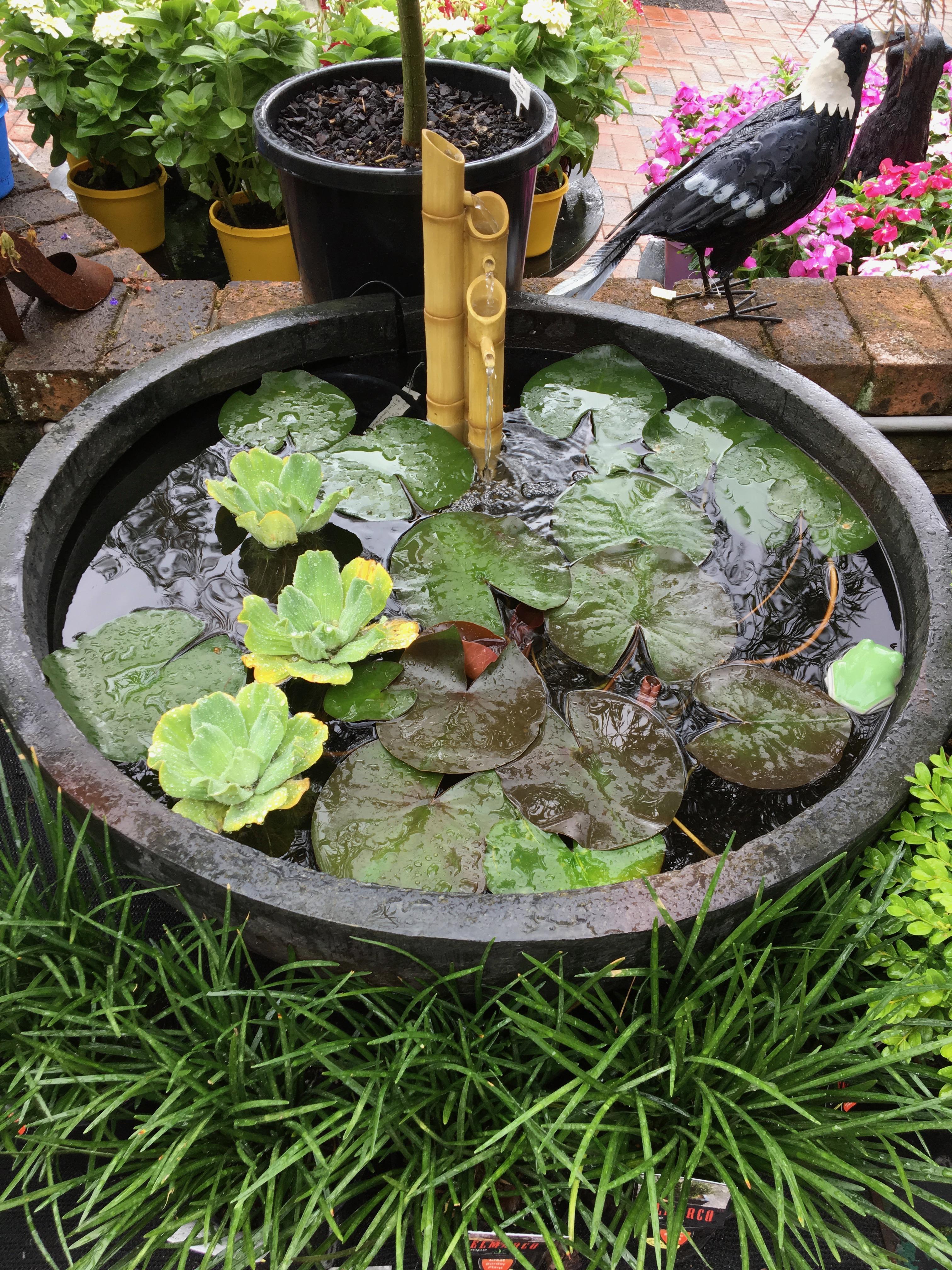 patio ponds container diy patio pond