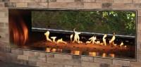 Carol Rose See-Thru Linear Outdoor Gas Fireplace