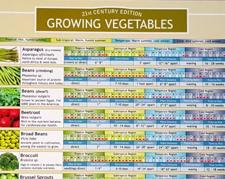 also growing vegetables planting chart terroir seeds rh store underwoodgardens