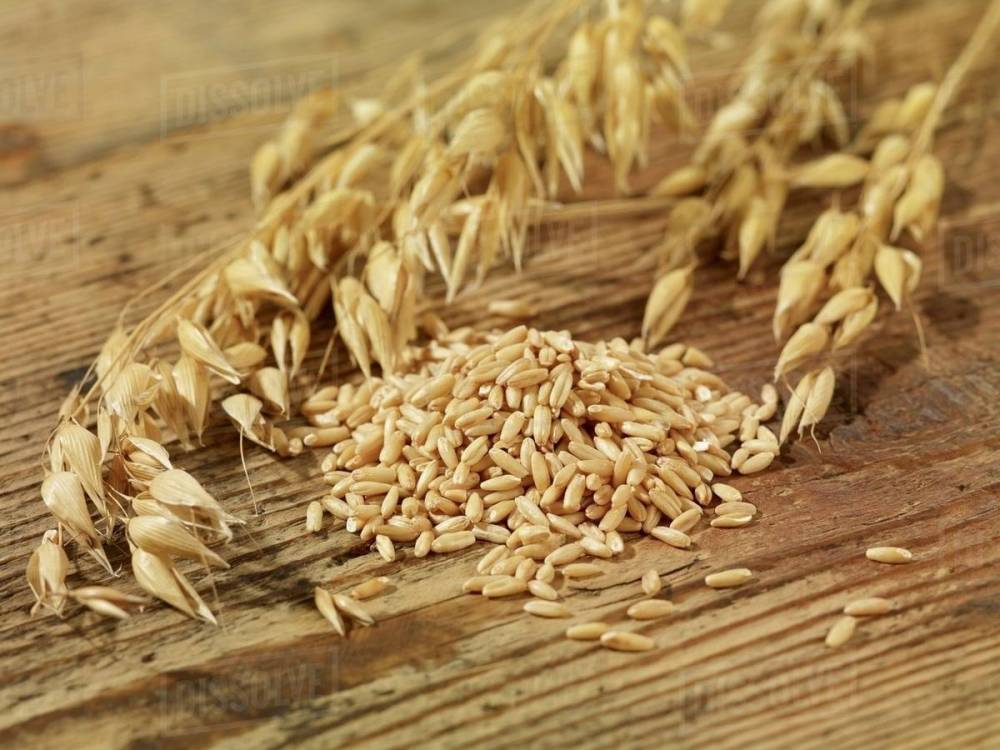 medium resolution of oat seeds and ears of oats on a wooden surface