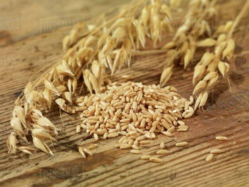 small resolution of oat seeds and ears of oats on a wooden surface