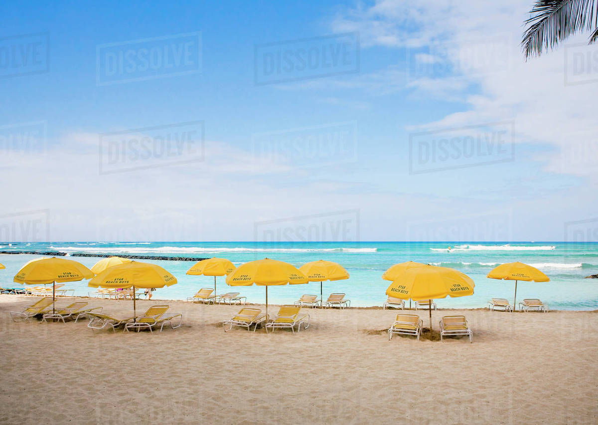 Beach Chairs With Umbrella Mexico Yucatan Peninsula Isla Mujeres Beach Chairs And Umbrellas On White Sand Beach Palm Frond In Foreground Stock Photo