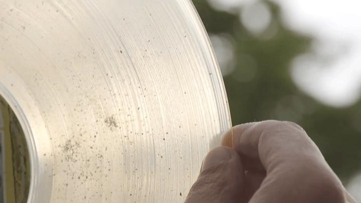 Image result for vinyl ashes
