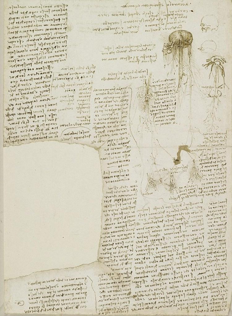 da Vinci list