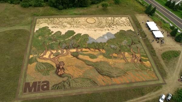 Artist Turns Crop Field Van Gogh Painting
