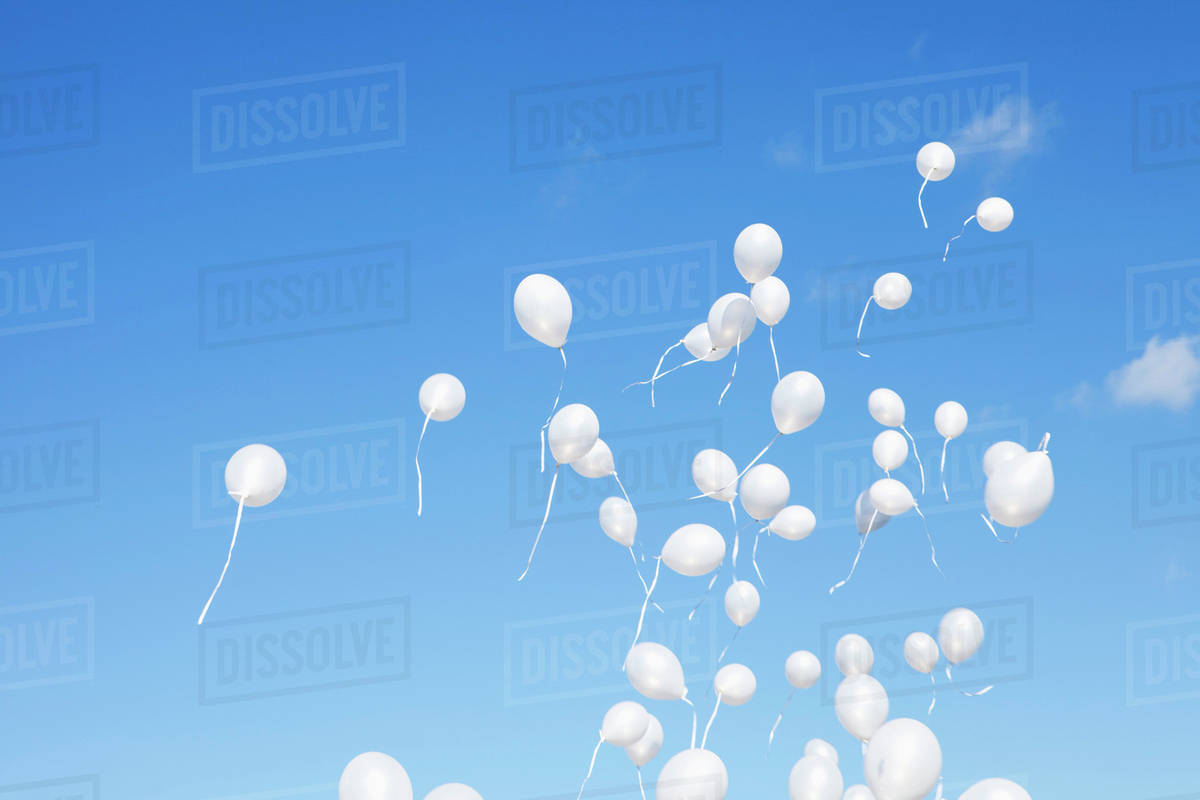 white balloons covering the