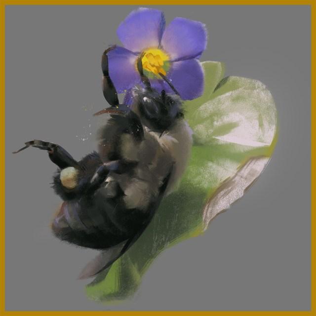 Melina zhu bumblebee
