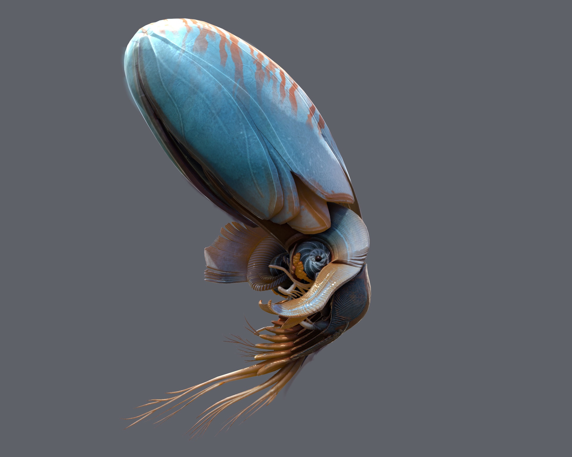 Artstation - Alien Squid 01 Tyler Smith