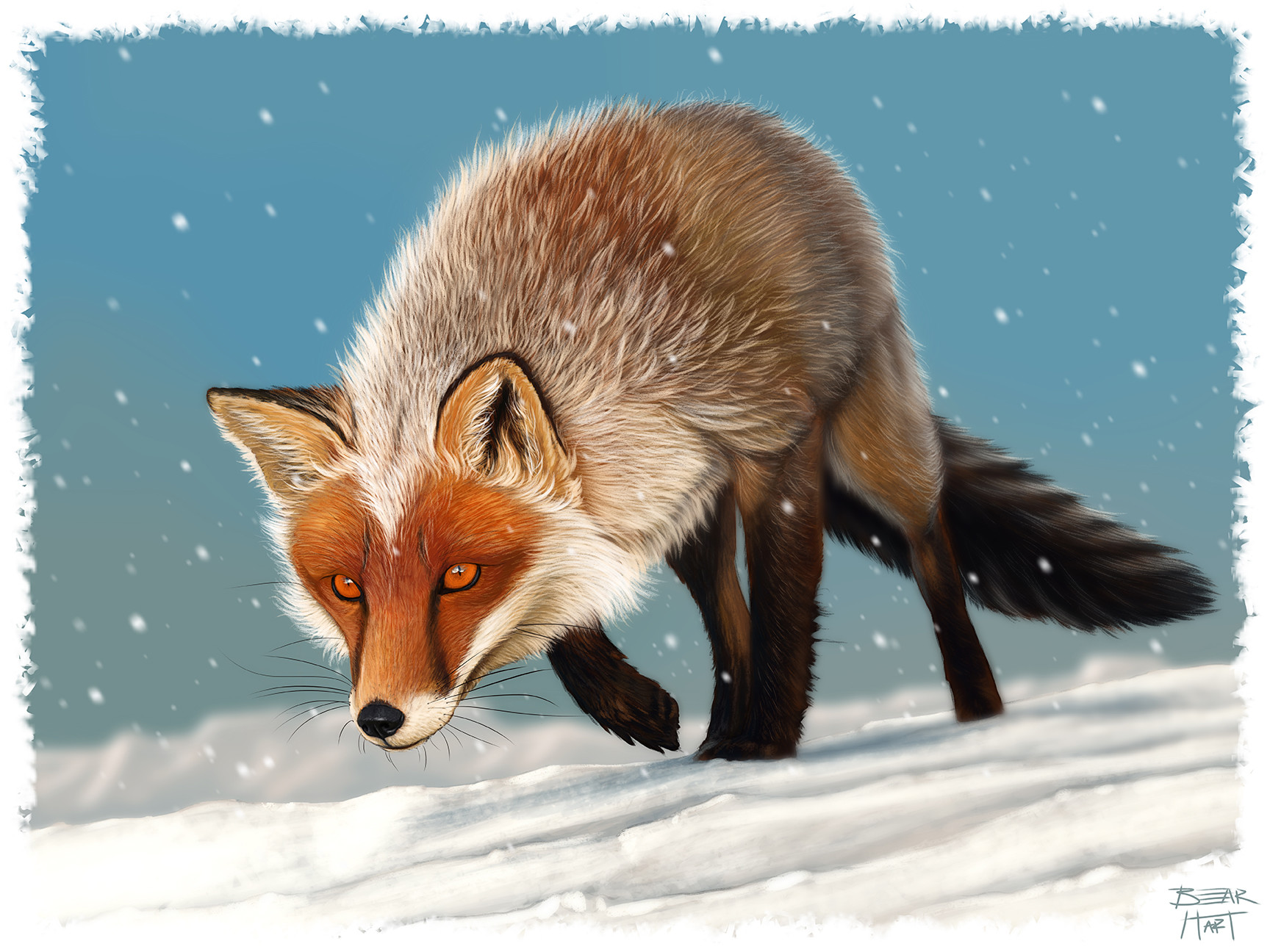 ArtStation  Red Marble Fox  Digital Painting Bear Hart