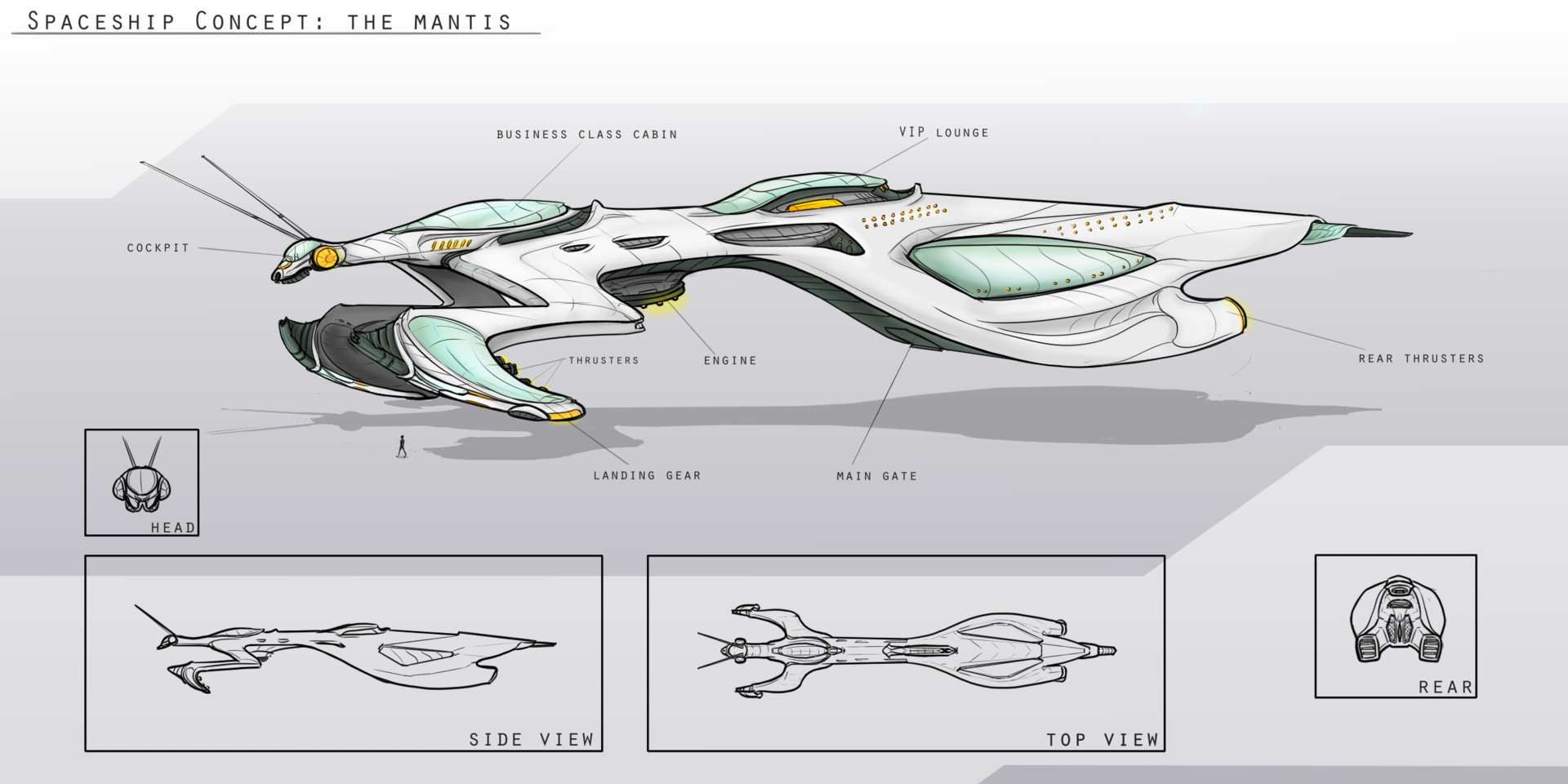 small resolution of the mantis