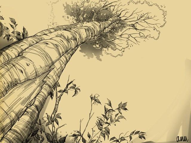 Anushweta de sarkar tree