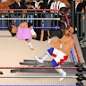 download Wrestling Revolution apk