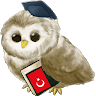 download Learn Turkish apk