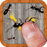 download Ant Smasher apk