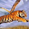 download Flying Tiger Simulator apk