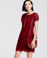 Lyst - Ann Taylor Petite Lace Shift Dress in Red