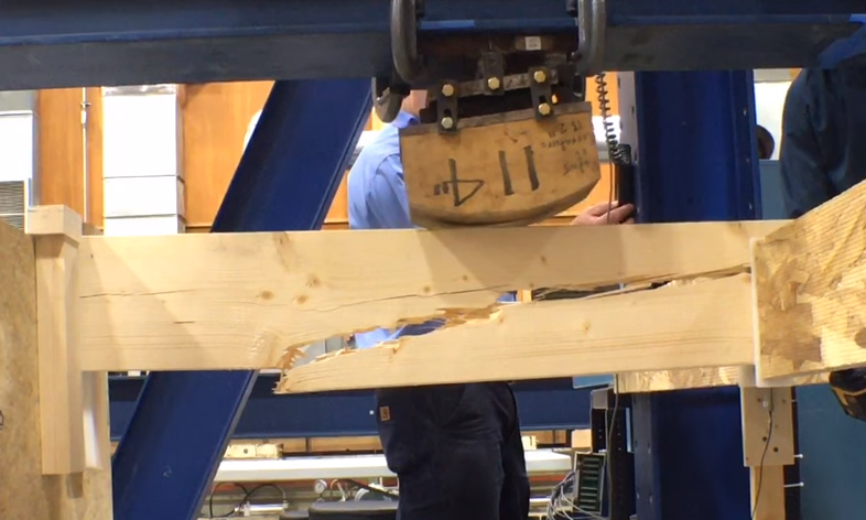 Norway Spruce For Framing Lumber Jlc Online Framing