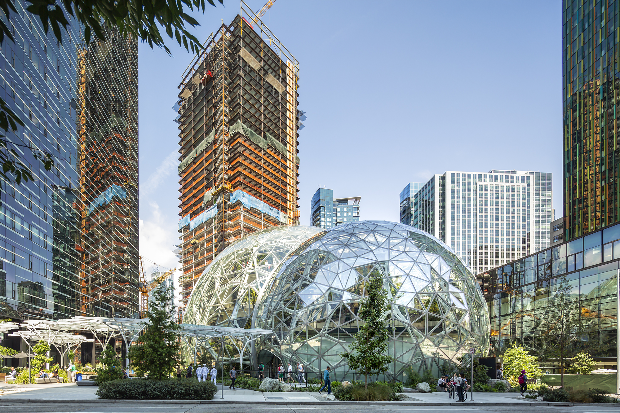 Amazons Seattle Spheres And The Evolution Of The