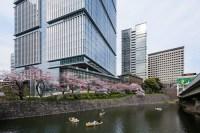 Tokyo Garden Terrace | Architect Magazine | Kohn Pedersen ...