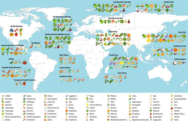 El mapa que explica de dnde son originarios los alimentos