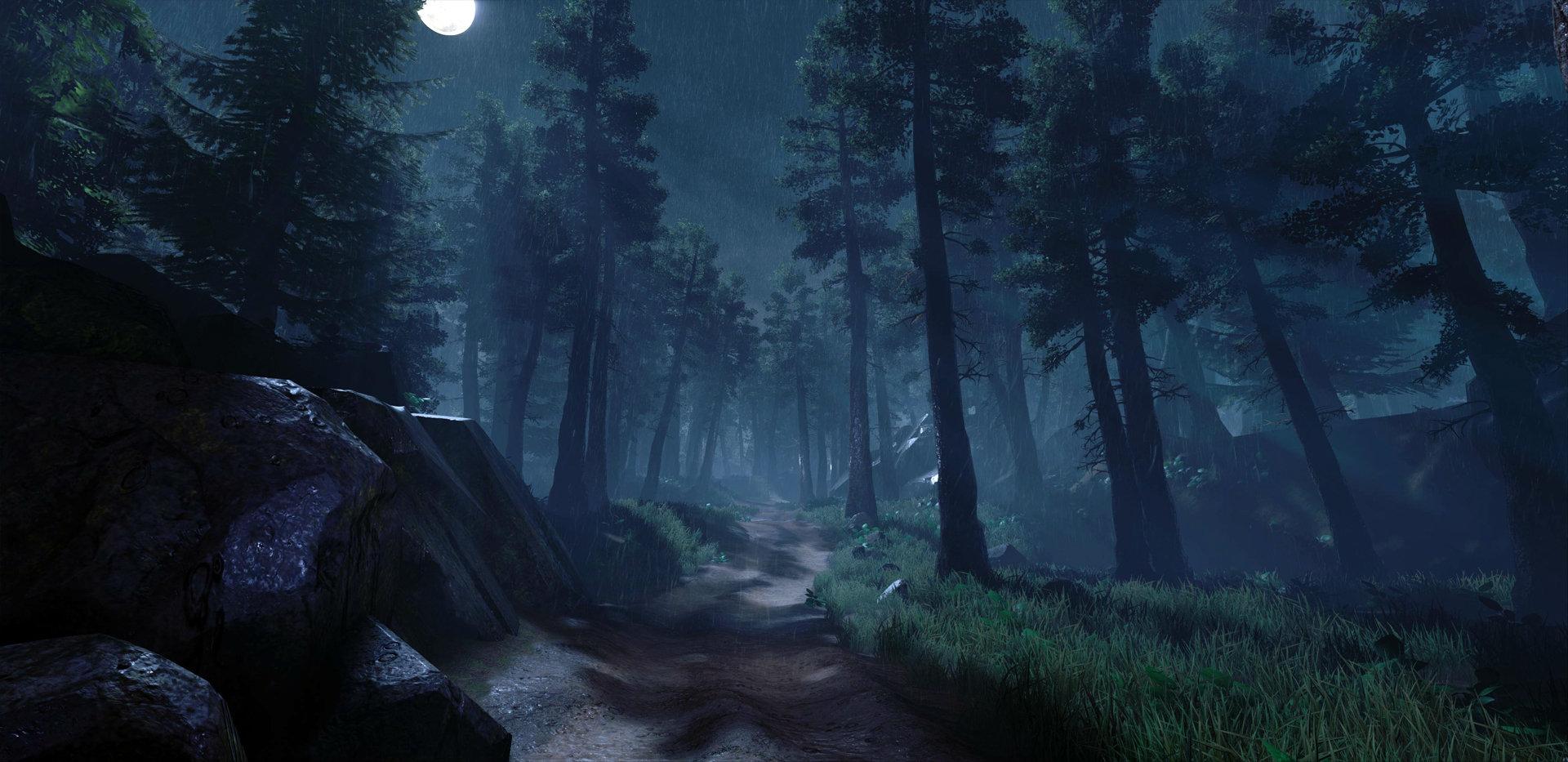 artstation night forest plawius